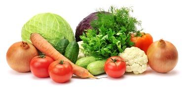 zahrada-zelenina-1